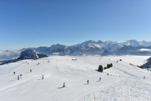 Skifahren-Lofer (c) Almenwelt Lofer